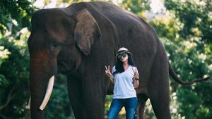 Bebizy Wisata ke Taman Wisata Lembah Hijau Lampung