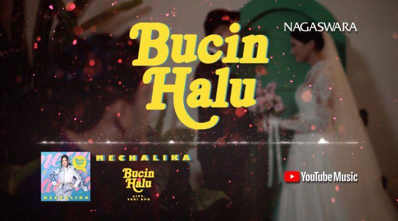 Lirik Lagu Bucin Halu, Official Lyrics Lagu Mechalika